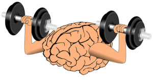 brain-w weights_CCO Public Domain_Pixabay