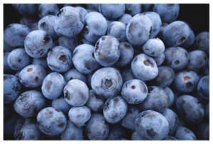 blueberries-CCO Public Domain-Pixabay